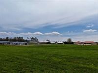 4 House Breeder Farm 61+/- Acres : Altoona : Blount County : Alabama