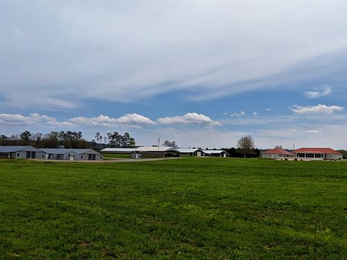 4 House Breeder Farm 61+/- Acres : Altoona : Blount County : Alabama