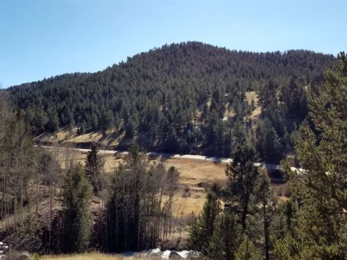 Great Campsite With Stream : Cripple Creek : Teller County : Colorado