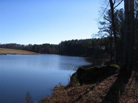 208 Acres With A 7 Acre Lake : Greensboro : Greene County : Georgia