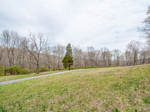 61 Prime Williamson County Acres : Franklin : Williamson County : Tennessee