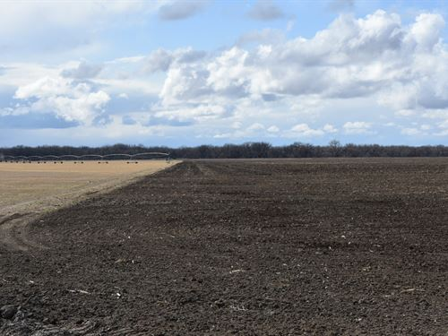 The Perfect Quarter Section : Hillrose : Morgan County : Colorado