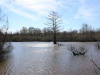 622 Acres In Neshoba County : Philadelphia : Neshoba County : Mississippi