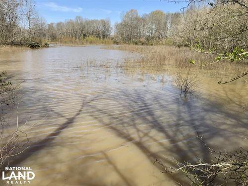 The Lake Demopolis Hunting And Timb : Greensboro : Hale County : Alabama