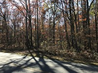 Awesome Wooded Home Site : Milner : Lamar County : Georgia