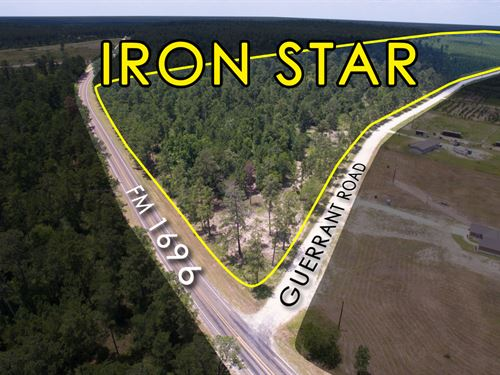 16.453 Ac Tract 11 Iron Star : Huntsville : Walker County : Texas