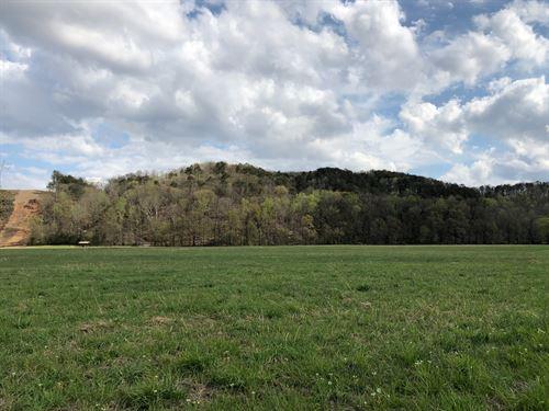 34.94 +/- Acres In South Bartow Co : Cartersville : Bartow County : Georgia