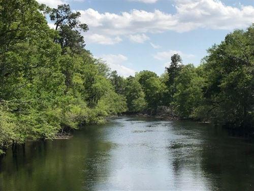 Goldstein Tract : Nichols : Marion County : South Carolina