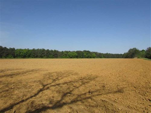22 Acres of Agriculture Land : Morris : Clay County : Georgia