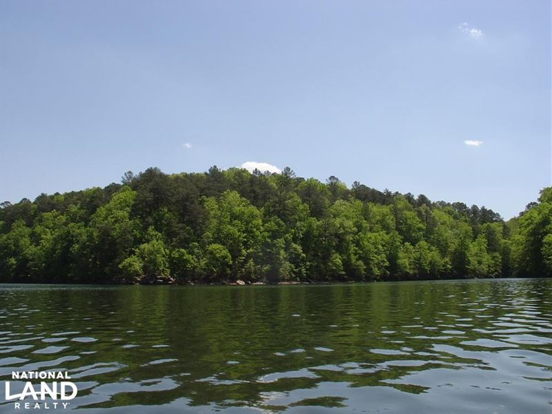 Smith Lake Lot 2 at Lakewoods on Ro : Arley : Winston County : Alabama