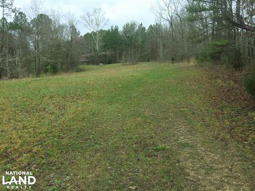 Hwy 247 Hunting Camp OR Homesite : Tuscumbia : Colbert County : Alabama