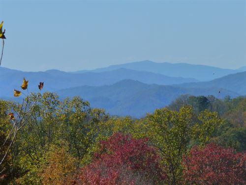 Mountain Cove Homestead & Farm : Marshall : Madison County : North Carolina