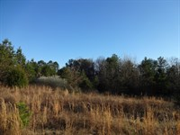 12.58 Acres Combination Wooded : Belton : Greenville County : South Carolina