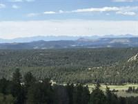 Teller Park Ranch : Florissant : Teller County : Colorado