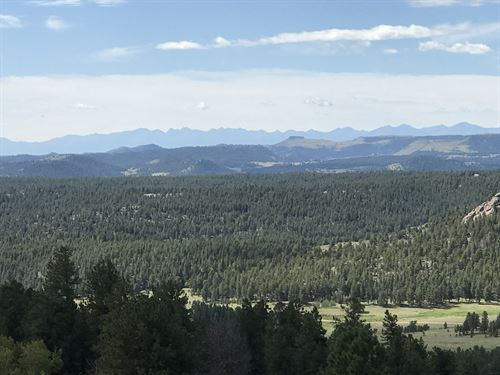 Teller Park Ranch : Florissant : Teller County : Colorado