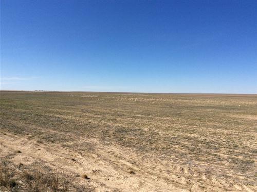 Absolute Land Auction : Cheyenne Wells : Cheyenne County : Colorado