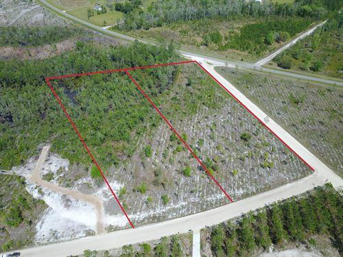 5 Acres - Jane Lane : Hilliard : Nassau County : Florida