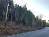 Land Auction In Easley, Sc : Easley : Pickens County : South Carolina