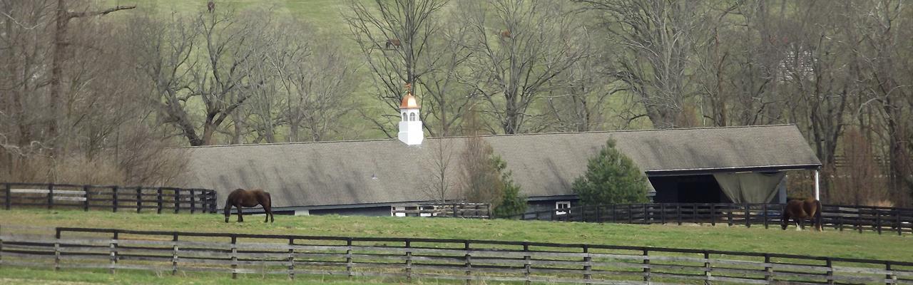 343 Acre Stoner Mill Farm : Paris : Bourbon County : Kentucky