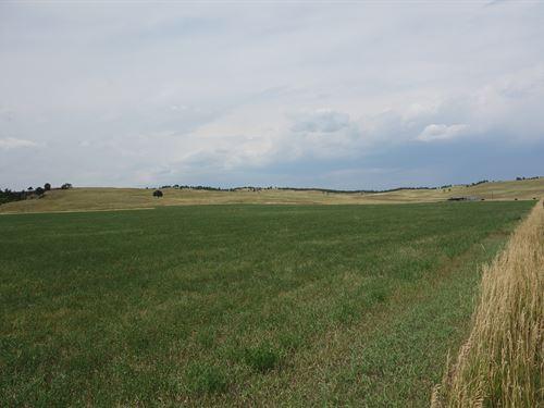 Park View Ranch : Hermosa : Custer County : South Dakota