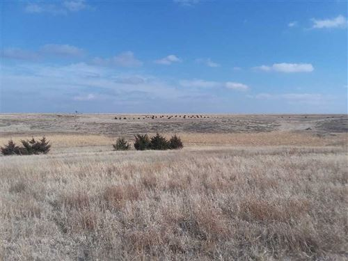 Hunting Oasis, 700 Acres, Laki : Lakin : Kearny County : Kansas