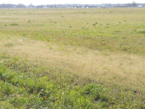 House Lots in Indianola, MS : Indianola : Sunflower County : Mississippi