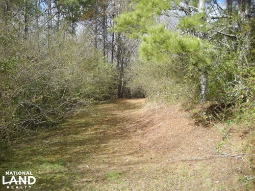 35 Acres Potential Home/Farm/Recrea : Ranger : Gordon County : Georgia