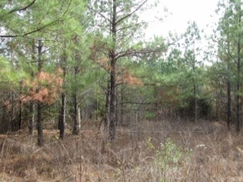 280 Acres In Webster County In Eupo : Eupora : Webster County : Mississippi