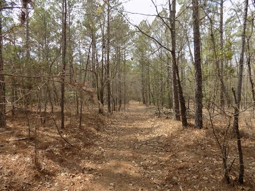 Chesterfield County Sc Acreage : Chesterfield : South Carolina