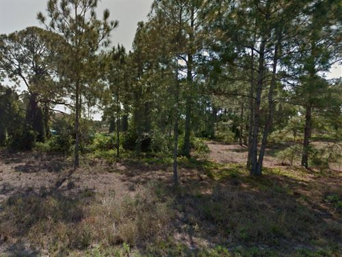 Lee County, Fl $25,000 Negotiable : Lehigh Acres : Lee County : Florida