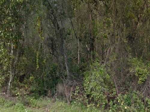 Polk County, Fl $17,500 Neg : Polk City : Polk County : Florida