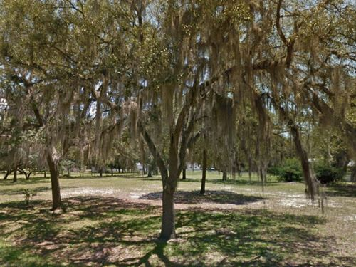 Citrus County, Fl $18,000 Neg : Hernando : Citrus County : Florida