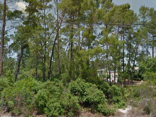 Pasco County, Fl $40,000 Neg : New Port Richey : Pasco County : Florida