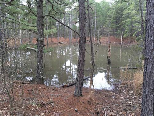 45 Acres Loaded With Mature Tim : Oxford : Izard County : Arkansas