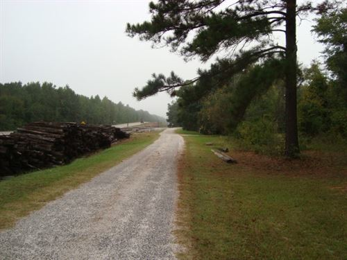 7 Acres, Fairfield County, Sc : Winnsboro : Fairfield County : South Carolina