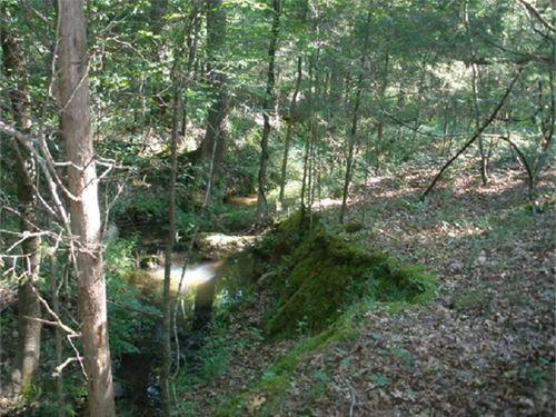 6.19 Acres - Richland County, Sc : Blythewood : Richland County : South Carolina