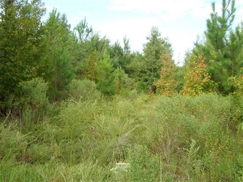 7.62 Acres - Fairfield County, Sc : Winnsboro : Fairfield County : South Carolina