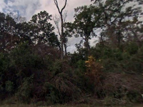 Wakulla County, Fl $18,000 Neg : Crawfordville : Wakulla County : Florida