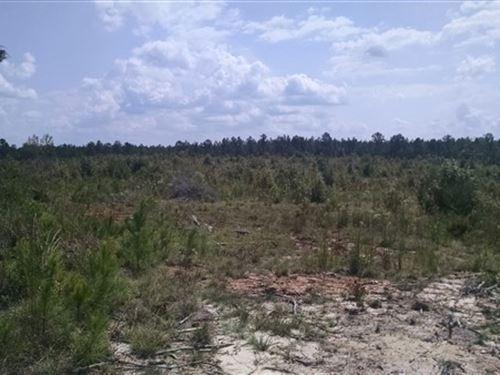 34 Acres - Fairfield County, Sc : Winnsboro : Fairfield County : South Carolina