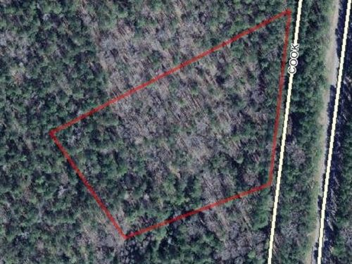 5.55 Acres - Fairfield County, Sc : Ridgeway : Fairfield County : South Carolina