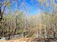 The Atchison Trace Road Columbiana : Columbiana : Shelby County : Alabama