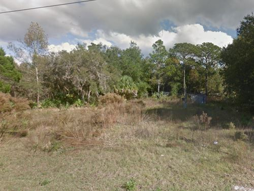 Citrus County, Fl $35,000 : Homosassa : Citrus County : Florida