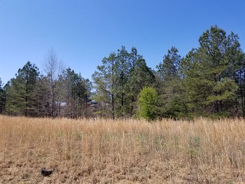 5.5+/-Acres Wooded Lot Near Sewanee : South Pittsburg : Marion County : Tennessee