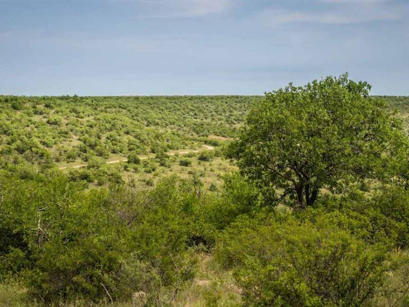 Twin Canyons Ranch : Throckmorton : Throckmorton County : Texas