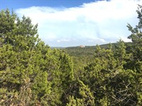 Scenic 6+ Acres In Mt. Lakes : Bluff Dale : Erath County : Texas