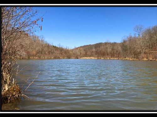 Duck Pond On Wayne : Patriot : Gallia County : Ohio