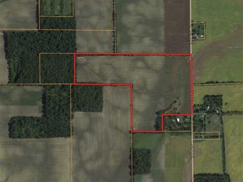 60 Acres of Tillable Land - Hartfo : Hartford City : Blackford County : Indiana