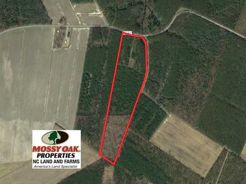 Under Contract, 25.13 Acres of Af : Scranton : Hyde County : North Carolina