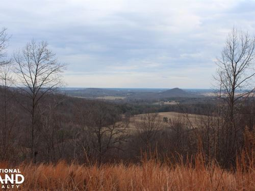 Mountain Getaway OR Hunters Cabin : Wilkesboro : Wilkes County : North Carolina