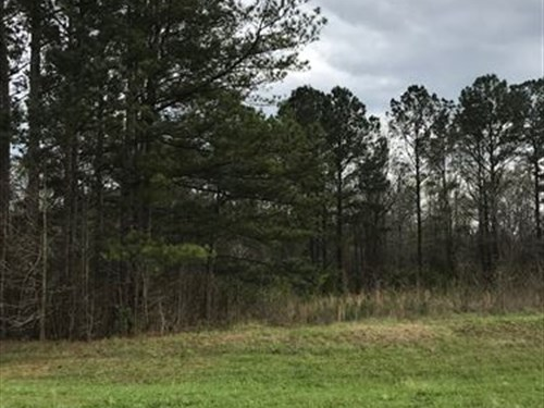 3.83 Acres In Morgan County : Rutledge : Morgan County : Georgia